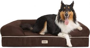 Friends Forever Pet Dog Bed