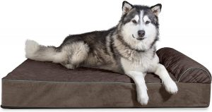 FURHAVEN PET- ORTHOPEDIC CHAISE LOUNGE, DONUT DOG BED