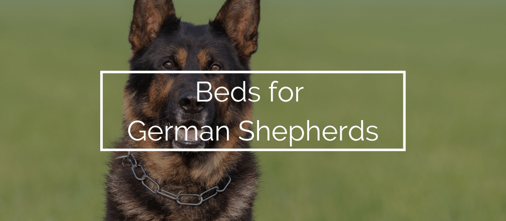 Beds for German Shepherds