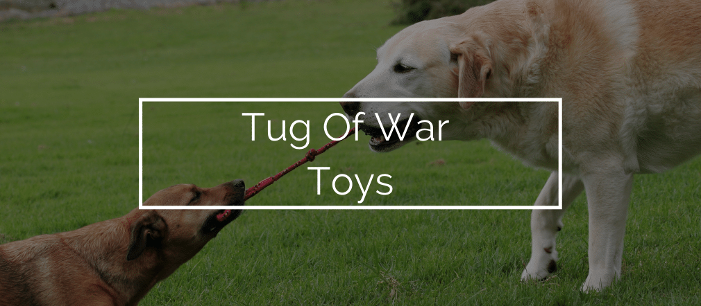 Best Tug Of War Toys