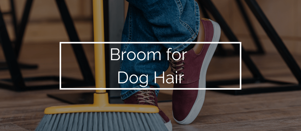 Broom for Dog Hair