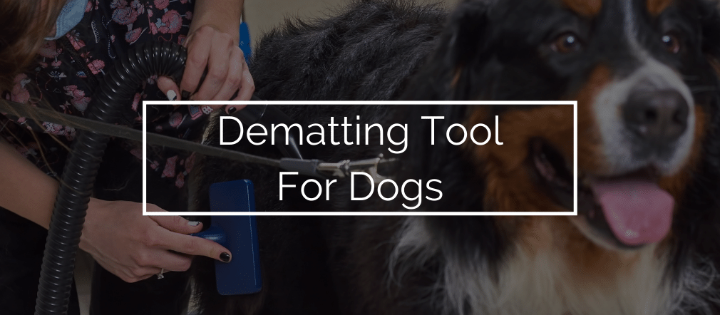 Dematting Tool For Dogs