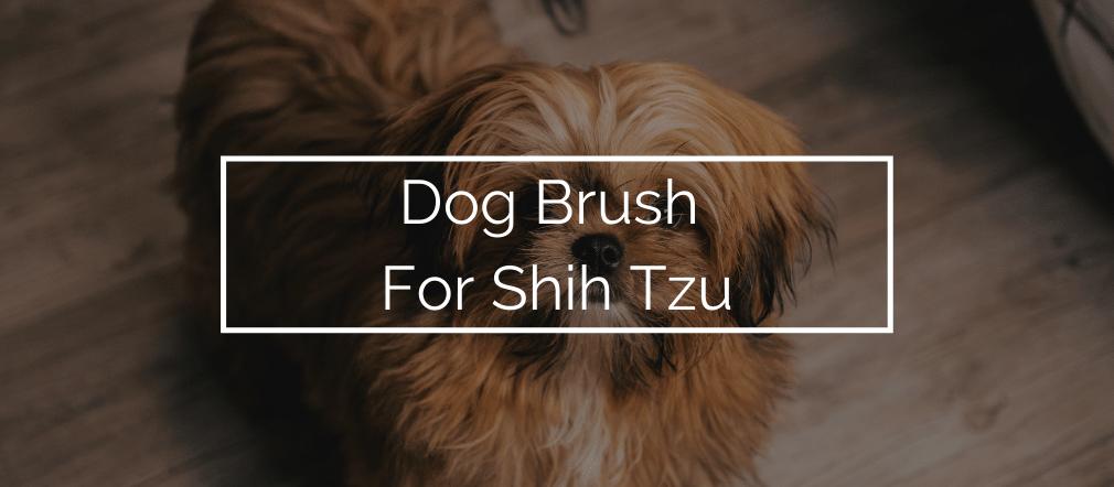 Dog Brush For Shih Tzu