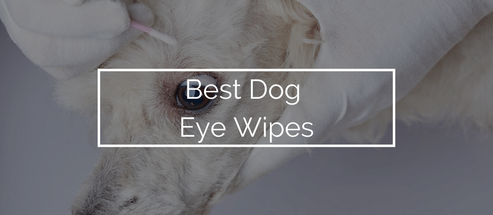 Dog Eye Wipes