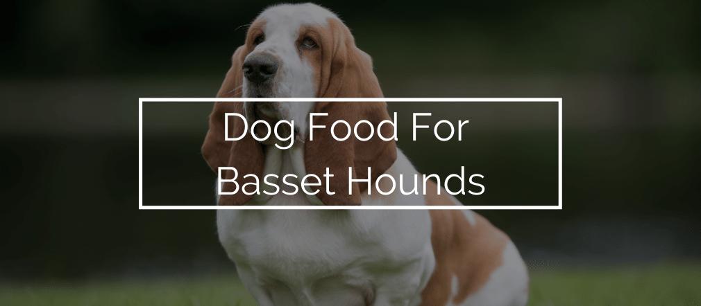 Dog Food For Basset Hounds