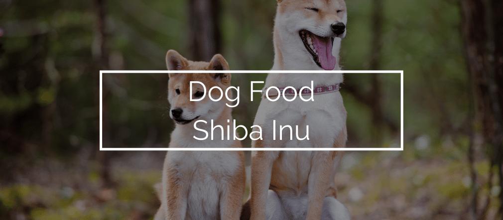 Dog Food Shiba Inu
