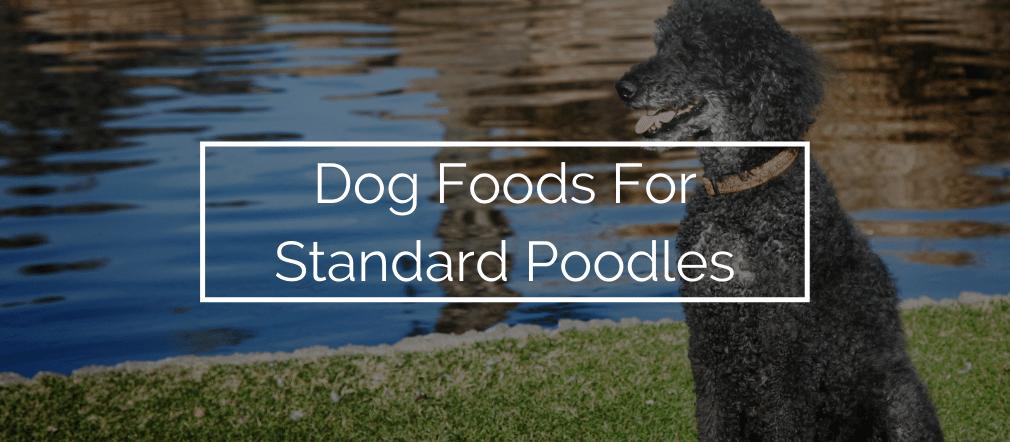Dog Foods For Standard Poodles