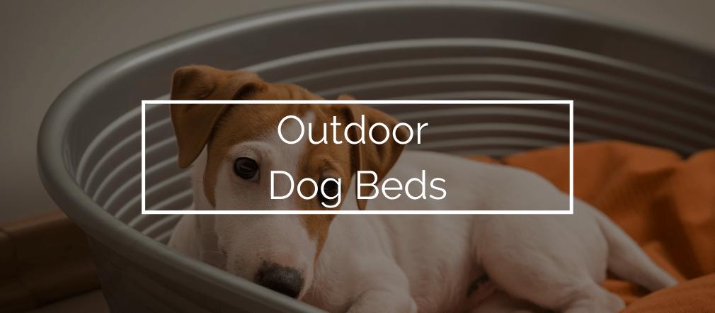 Outdoor Dog Beds