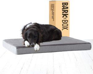 Barkbox best chew proof dog bed