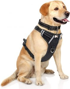 WINSEE Adjustable Reflective Oxford Outdoor Dog Vest