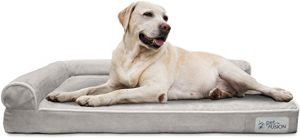 PetFusion BetterLounge Dog Bed