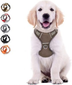 WALKTOFINE Adjustable Dog Harness