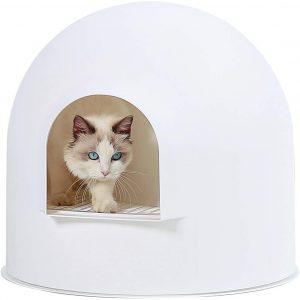 dog proof cat litter box