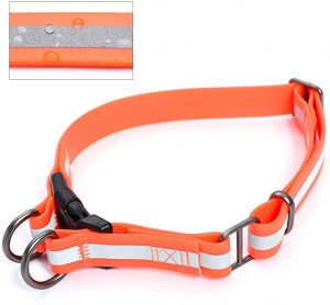 Mile High Life Water Proof Dog Collar
