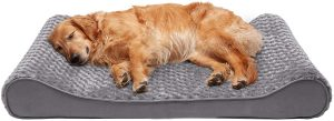 Furhaven Ergonomic Memory Foam Dog Bed