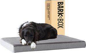 BarkBox Thick Orthopedic Gel Memory Foam Bed