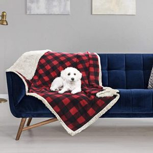 dog proof couch covers