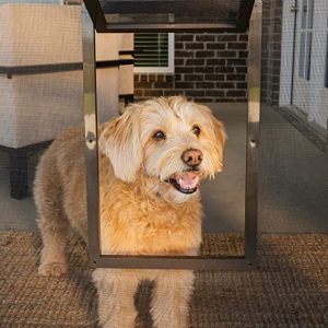 Heavy-duty insect screen Pet doors