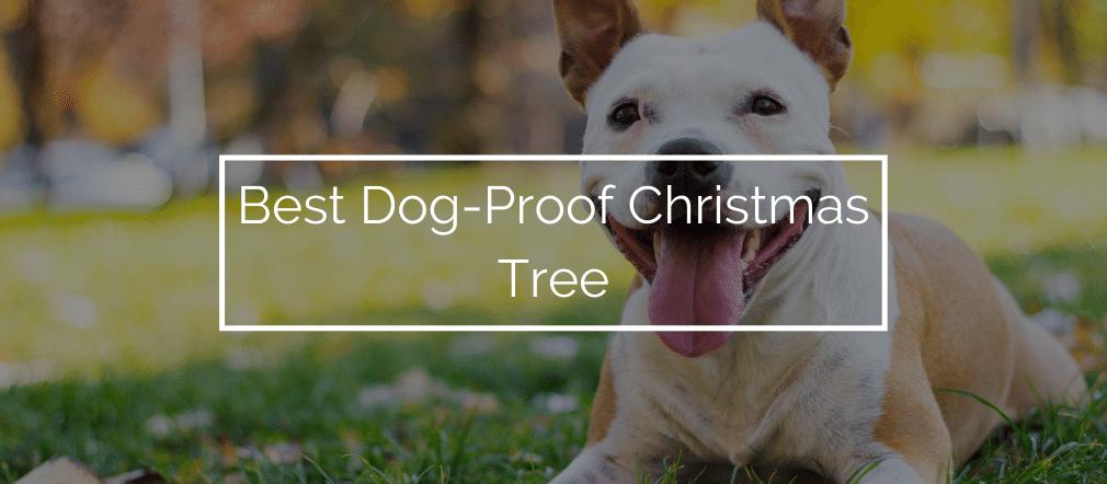 Best Dog-Proof Christmas Tree